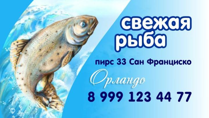 рыбалка фото визиток